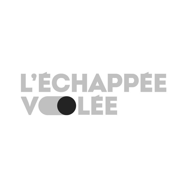 Logo_EV_JAUNE_N-B